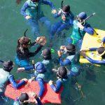Lone Pine Elementary Trip Catalina Island Marine Institute